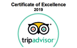 Certificate of Excellence (エクセレンス認証) 2017 を受賞!